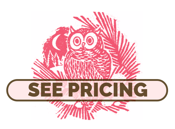 """Graphic button with our """"See pricing"""""""